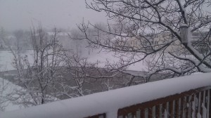 View of the blizzard from my porch.  No doubt it's beautiful.  But brutal to run in.